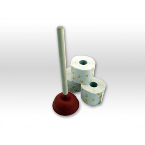 WC Pömpel Rohrreinigung wenn WC oder Abfluss verstopft ist